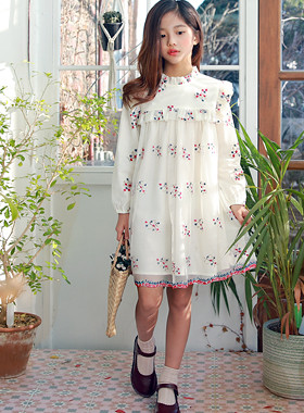 Julie embroidery chiffon dress